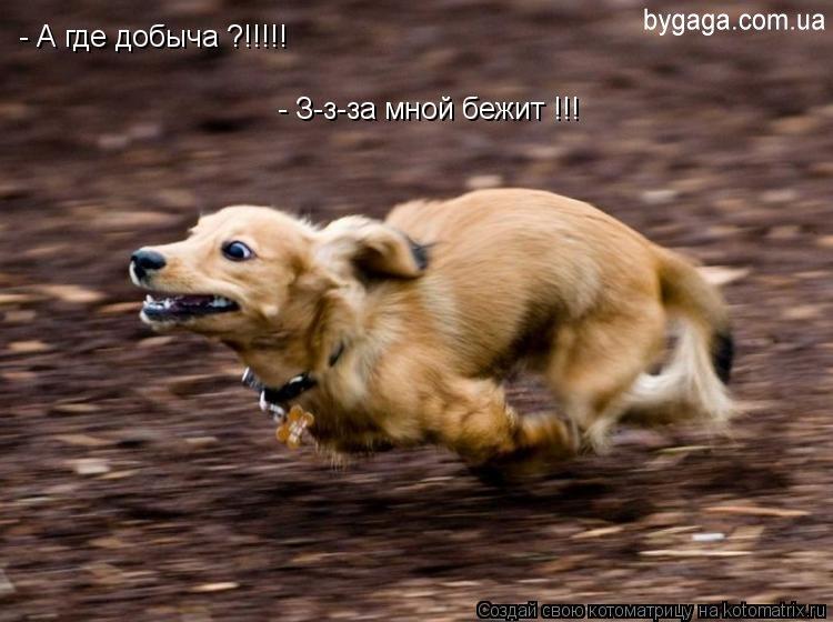 http://bygaga.com.ua/uploads/posts/1329604120_1052550.jpg