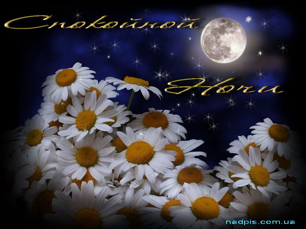 Красивые картинки спокойной ночи на английском
