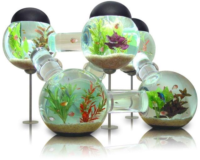Необычные аквариумы.