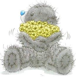 Прикольные Мишки Тедди в картинках (16 фото)
