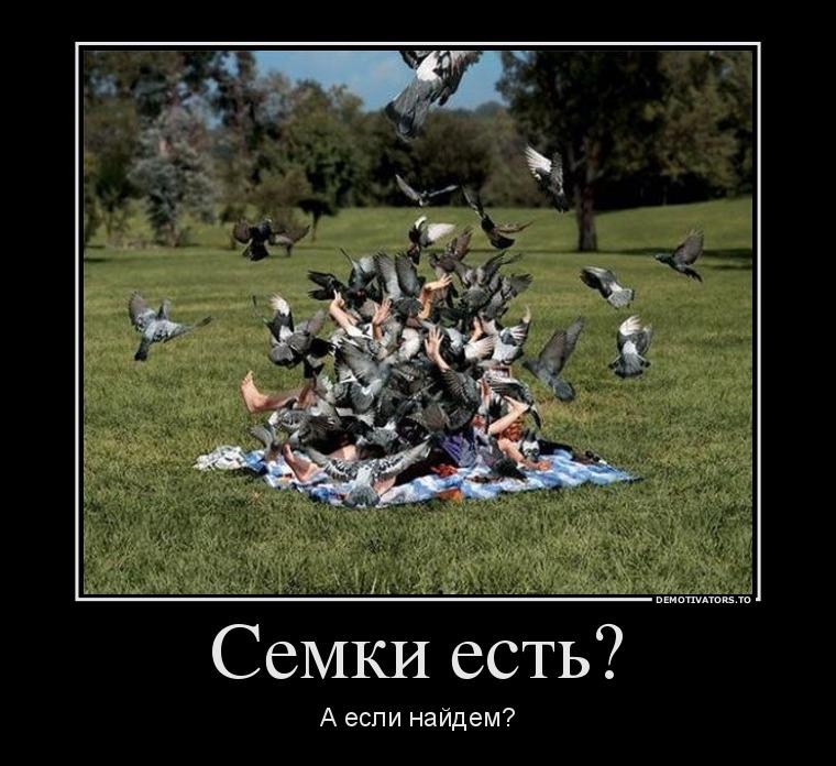 http://bygaga.com.ua/uploads/posts/1338675788_prikolnye-i-smeshnye-demy-14.jpg