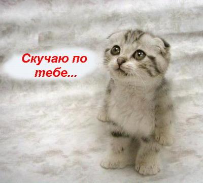 Картинки фото прикольные - ffe4