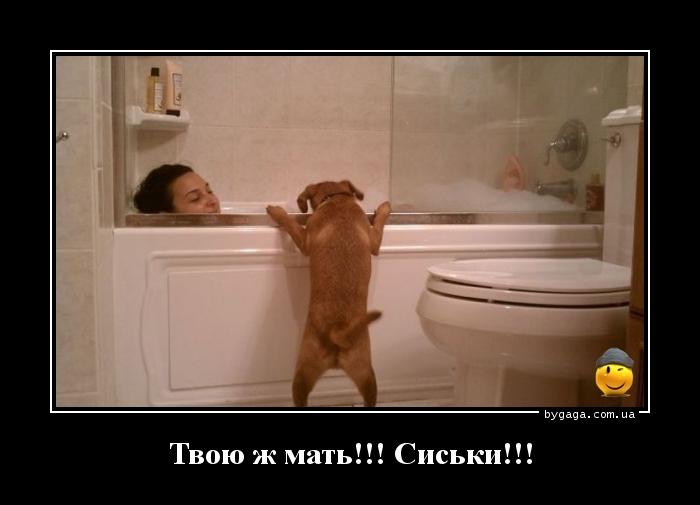 http://bygaga.com.ua/uploads/posts/1344784639_prikolnie_demi_bygaga.comua-1.jpg