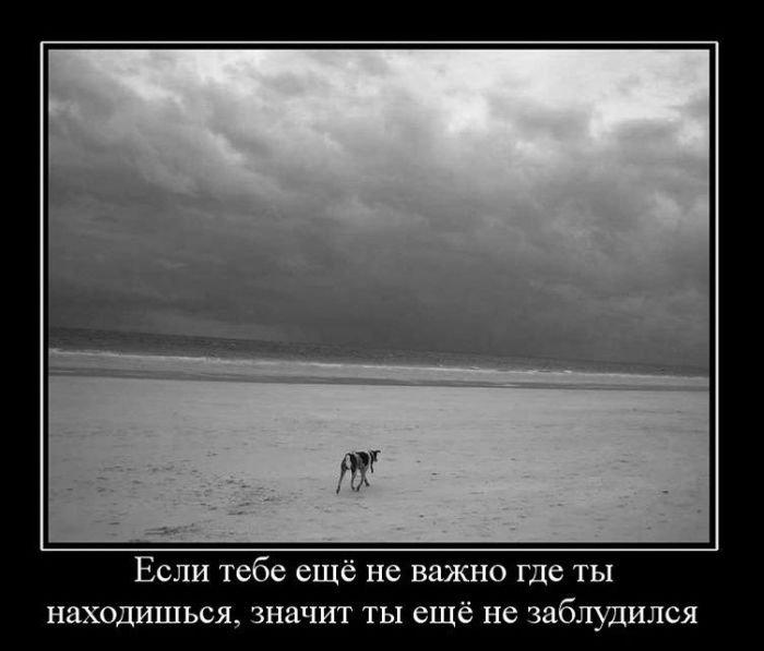 ... демотиваторы приколы на ночь (52 фото: bygaga.com.ua/demotivators/demotivatory-prikoly/print:page,1,6906...