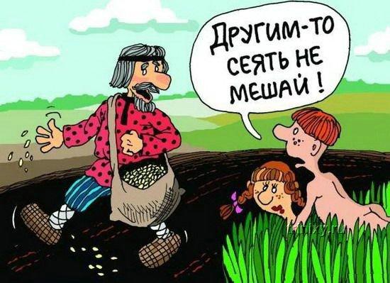Смешные до слез анекдоты про свинью  Мир анекдотов