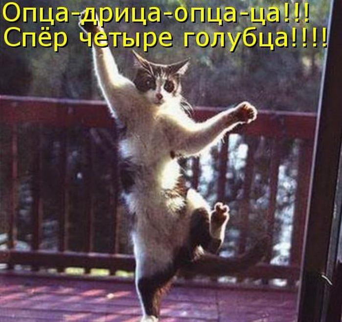 http://bygaga.com.ua/uploads/posts/1353943124_kotomatrici_na_lyuboy_vkus_7659-66.jpg
