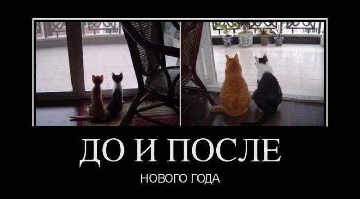http://bygaga.com.ua/uploads/posts/1355783338_demi_prikolnie_i_smechnie_ot_bygaga_749-61.jpg