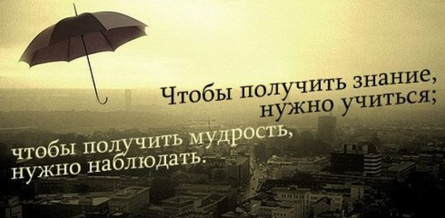 Цитаты и афоризмы фонвизина