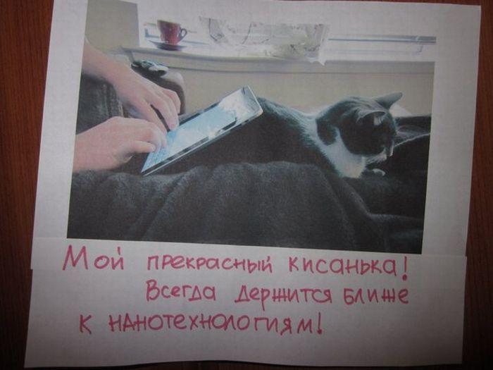 http://bygaga.com.ua/uploads/posts/1363110849_milie_kote-motivatori-2.jpg
