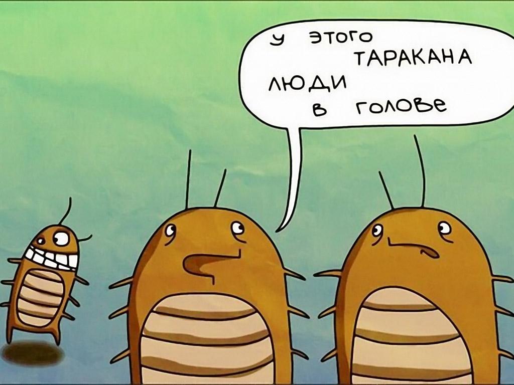 Инструкции юмористические