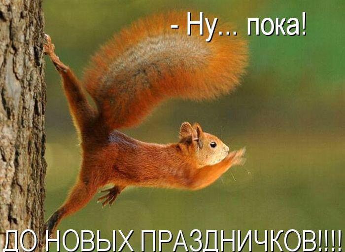 http://bygaga.com.ua/uploads/posts/1363369979_kotomatrivci_bygaga.com.ua_889-16.jpg