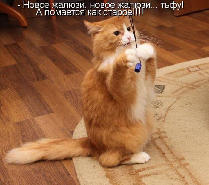 http://bygaga.com.ua/uploads/posts/1364484557_kotomatrivci_bygaga.com.ua_89-127.jpg