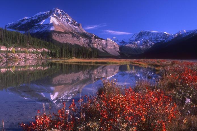 Национальный парк Джаспер в Канаде (16 фото)