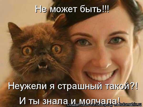 Улыбающие котоматрицы на утро 33 фото