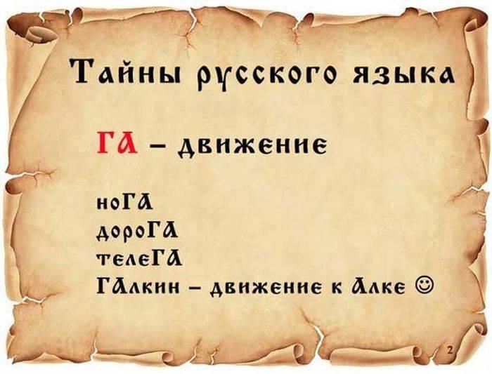 Любопытные факты о русском языке