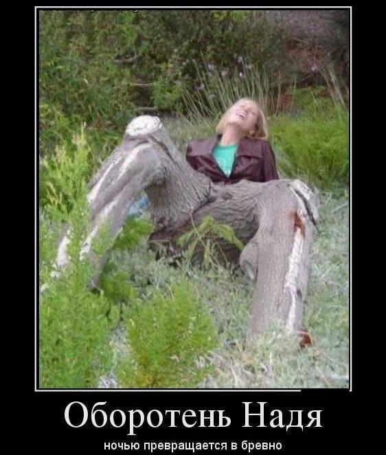 Демотиваторы ржака на бугага 41 фото