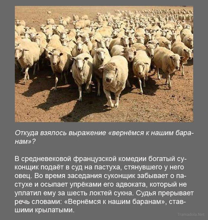 http://bygaga.com.ua/uploads/posts/1371735871_fakti_v_kartinkah_i_foto-14.jpg