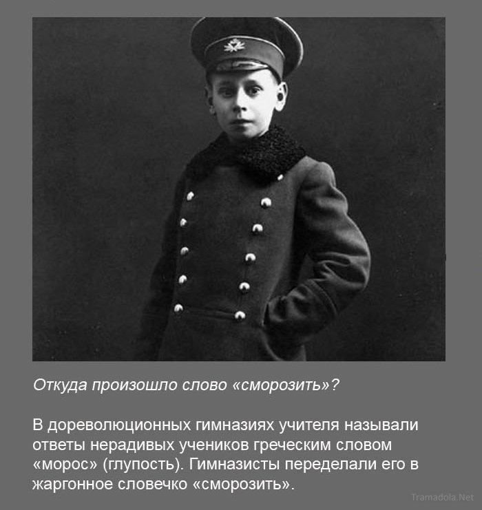 http://bygaga.com.ua/uploads/posts/1371735878_fakti_v_kartinkah_i_foto-21.jpg