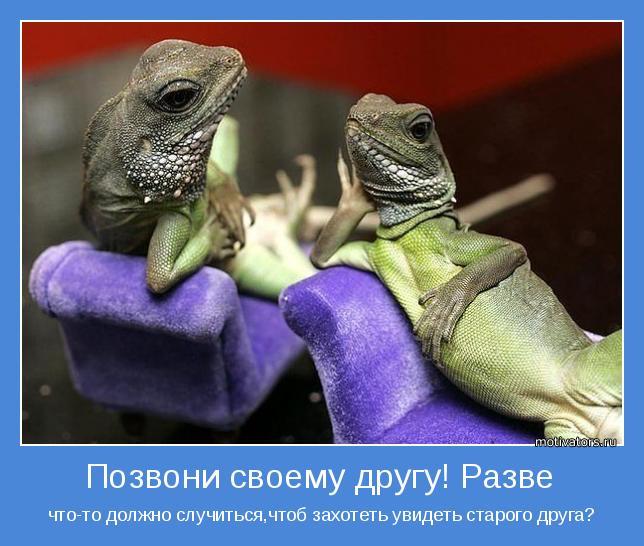 Красивые мотиваторы о дружбе и друзьях (41 фото)