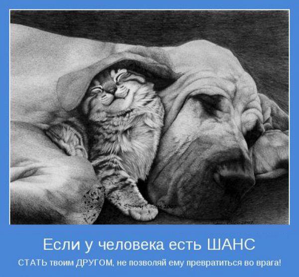 Я хочу, чтобы Вы улыбнулись. 1384880062_samie_interesnie_motivatori-100