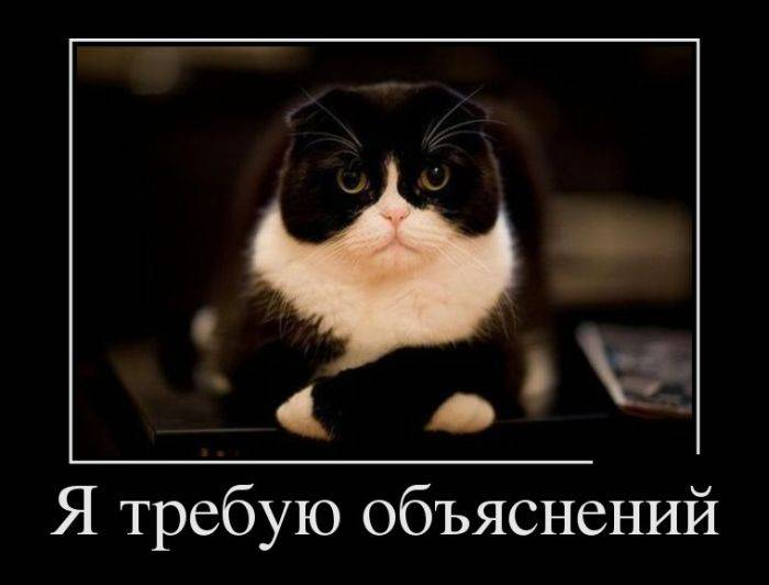 http://bygaga.com.ua/uploads/posts/2013-12/1387926551_klassnie_prikolnie_demotivatori-41.jpg