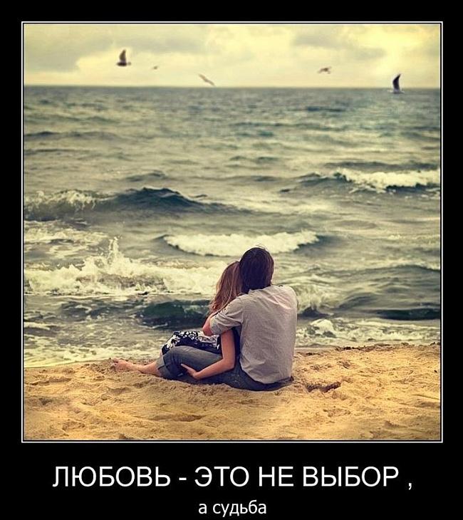интересные картинки про любовь