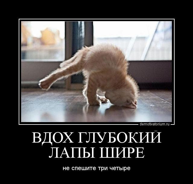 Обвал рубля привел к кризису на межбанковском рынке РФ. Банки перестали кредитовать друг друга - Цензор.НЕТ 236