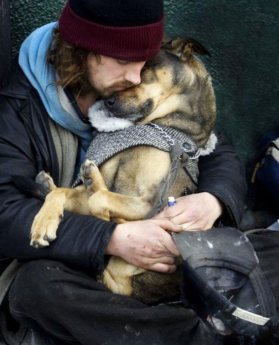 Чудесные фотографии с добротой и любовью (25 фото)