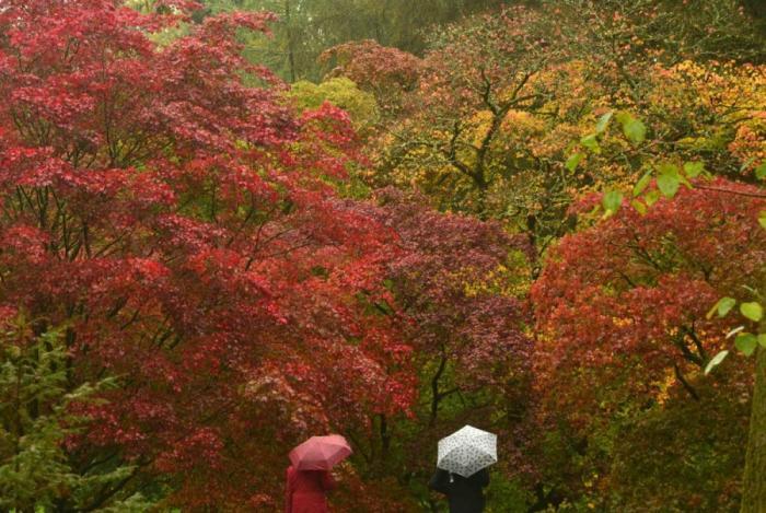 가을의 컬러 아름다움 2014 (20 사진)