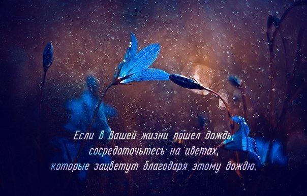 http://bygaga.com.ua/uploads/posts/2014-11/1416992615_umnye-mysli-18.jpg