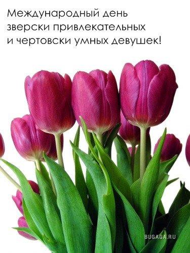 Классные картинки к 8 марта 2013 (15 фото)