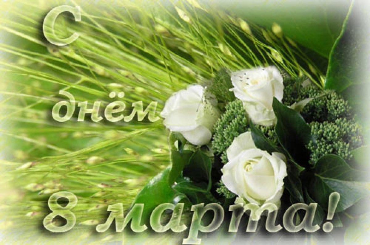 Картинки белые розы паздровление с 8 марта