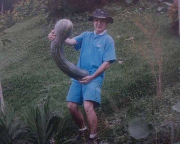 Короткие и смешные анекдоты про секс Самые пошлые