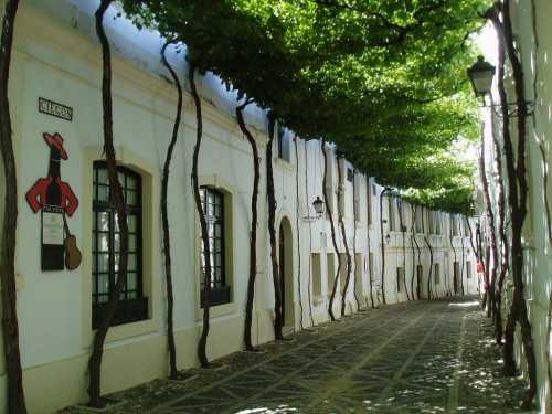 Чудесные улицы, расцветающие с приходом весны (17 фото)