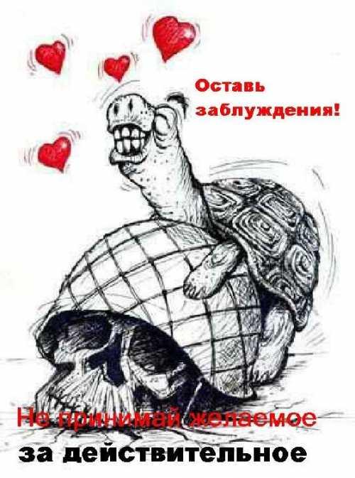 Смешные и позитивные анекдоты о любви и любимых!