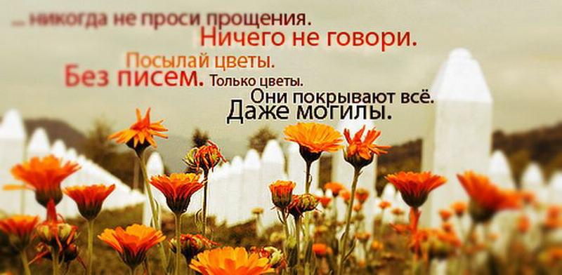 Цитата к цветов 46