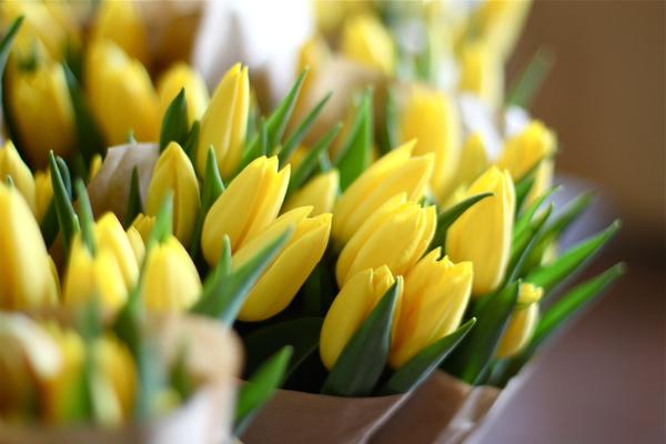 Коллекция картинок про весну!): bygaga.com.ua/vremena-goda/vesna/3598-kollekciya-kartinok-pro-vesnu...