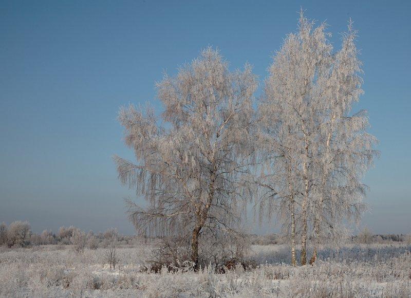 Весёлая зима в картинках 22 фото