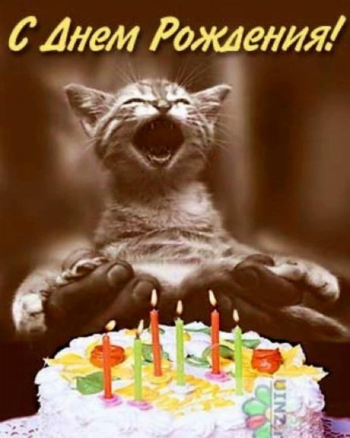 Смешные поздравления с днем рождения для коллег