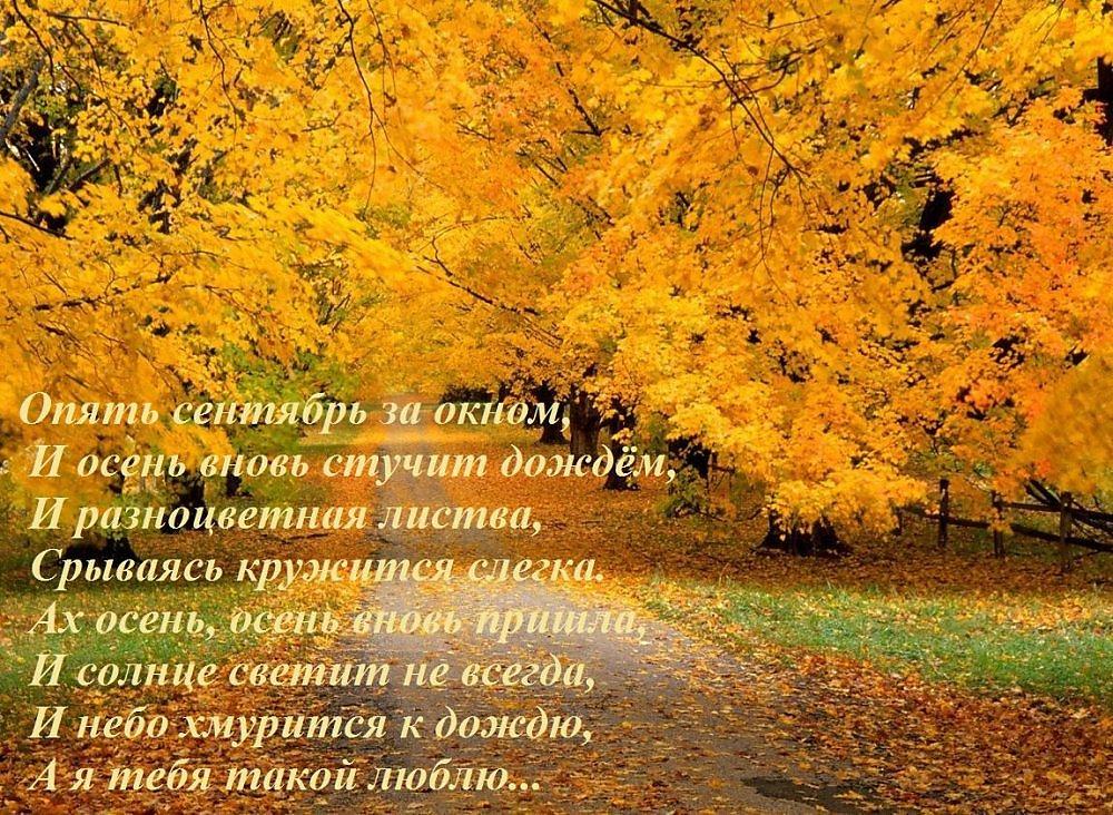 Подборка замечательных картинок про осень с красивыми надписями и статусами | скачать на мир позитива.