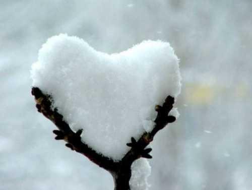 Статусы про верную любовь на