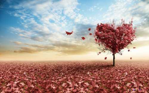 Осень статусы красивые