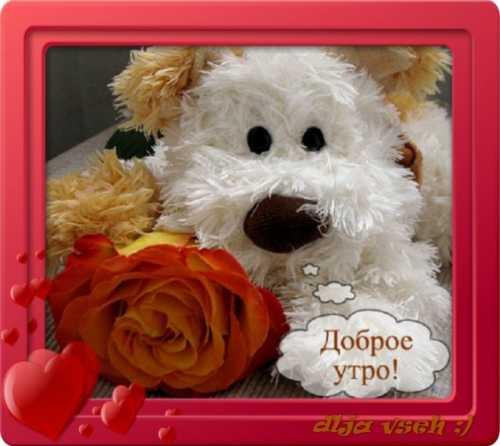http://bygaga.com.ua/uploads/posts/2015-05/thumbs/1432200641_kartinki_dobroe_ytro-8.jpg
