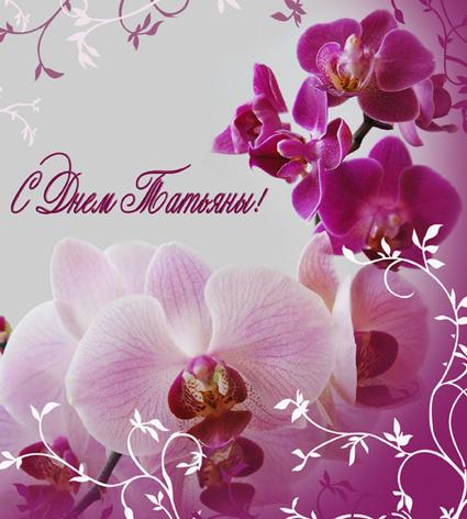 Доставка цветов в Екатеринбурге круглосуточно Интернет
