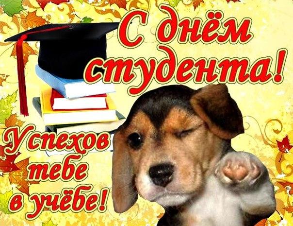 Поздравление любимой с днём студента