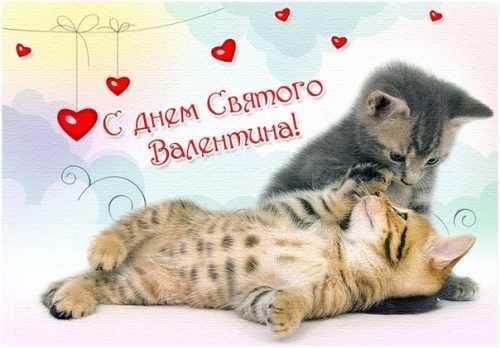Лучшие открытки и картинки на День Святого Валентина (15 фото)