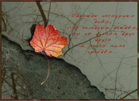 Мудрые картинки со смыслом и надписями (17 фото)