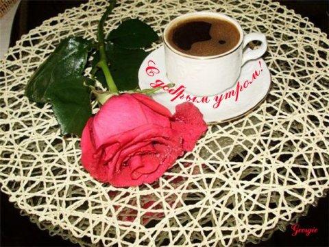 красивые картинки доброе утро с пожеланиями