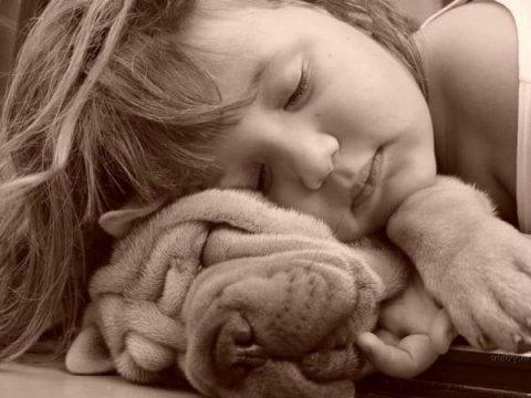 Спокойной ночи любимым картинки (19 фото)