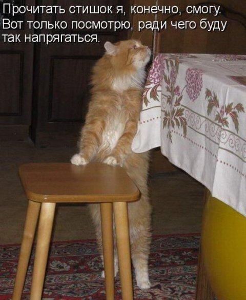 bygaga.com.ua